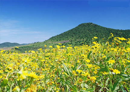 Vizag araku tour 4 DAYS 3 NIGHTS